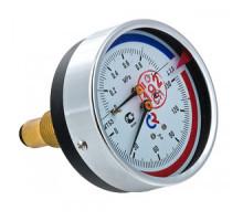 Термоманометр ТМТБ-31Т Dy 80 с задним подключением 1/2, 10 бар 0-120